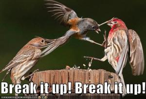 break_it_up